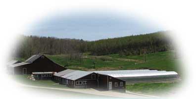 Shushan Valley Hydro Farm